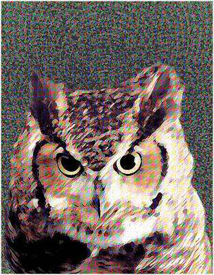 Mixed Media - Owl By Patricia Griffin by Patricia Griffin