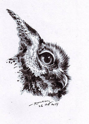 Hati Drawing - Owl/celepuk/burung Hantu by Mohammad Ramli