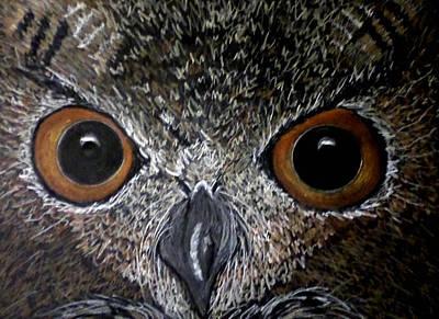 Owl Enlightened Art Print by Michelle Audas