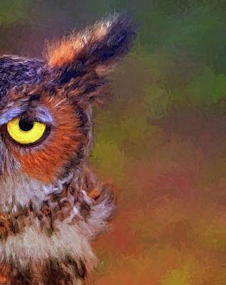 Photograph - Owl Eyed by Alice Gipson