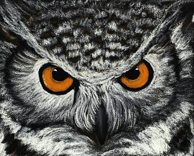 Drawing Painting - Owl Eyes by Anastasiya Malakhova