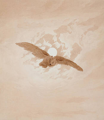 Drawing - Owl Flying Against A Moonlit Sky by Caspar David Friedrich