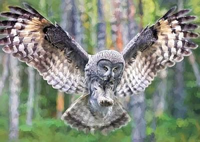 Digital Art - Owl In Flight by Charmaine Zoe