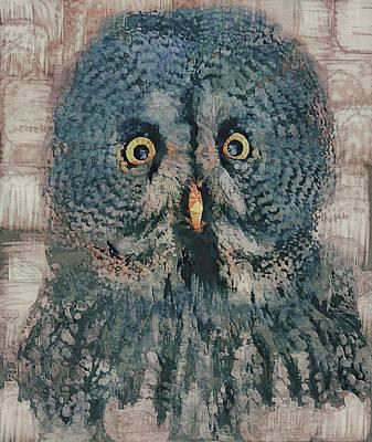 Pet Portraits Digital Art - Owl Life 1 by Yury Malkov