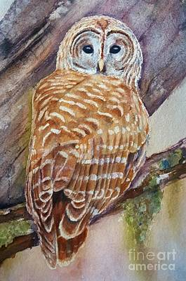 Old Barn Painting - owl by Patricia Pushaw