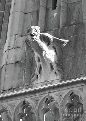 Photograph - Owl Relief On Gothic Building by Carol Groenen
