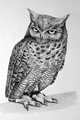 Stipple Owl Drawing - Owl by Rens Ink