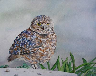 Owl Art Print by Sharon Farber