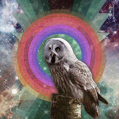 Drawing - Owl Spirit by Lori Menna
