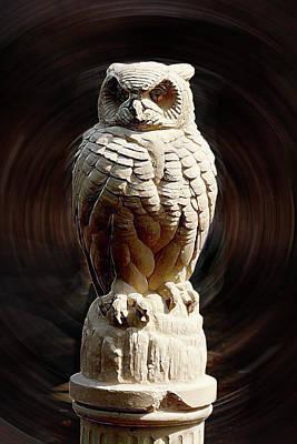 Digital Art - Owl by Terry Cork