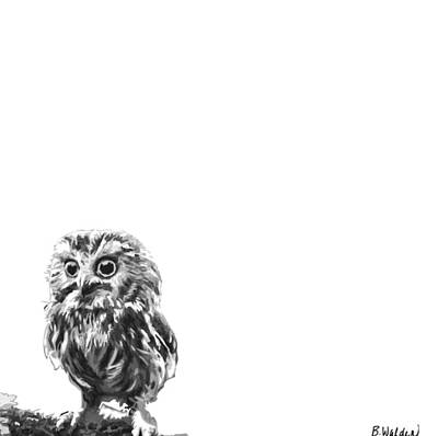 Black And White Owl Painting - Owl Too by Boughton Walden