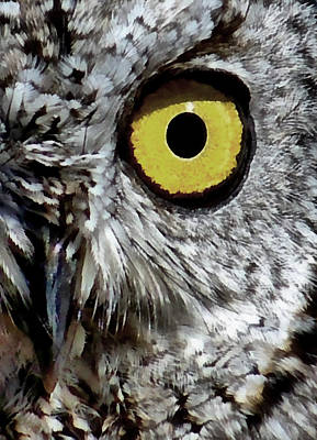 Digital Art - Owl Vision by Ernie Echols