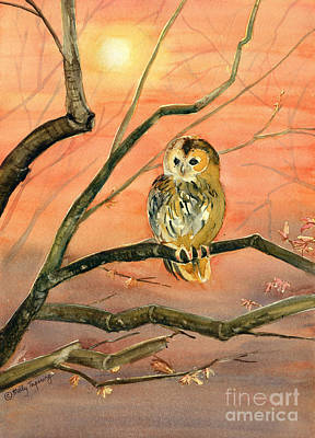 Painting - Owl Watercolor Art by Melly Terpening