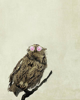 Photograph - Owl With Pink Rose Eyes On Beige With Vintage Texture by Brooke T Ryan