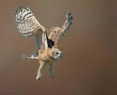 Sean Rights Managed Images - Owlet First Flight Royalty-Free Image by Judi Dressler