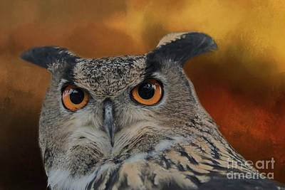 Photograph - Owl's Eyes by Eva Lechner