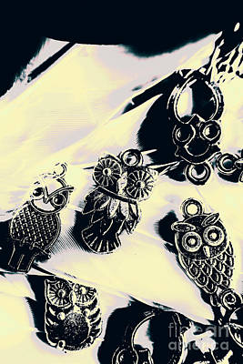 Jewelry Photograph - Owls From Blue Yonder by Jorgo Photography - Wall Art Gallery