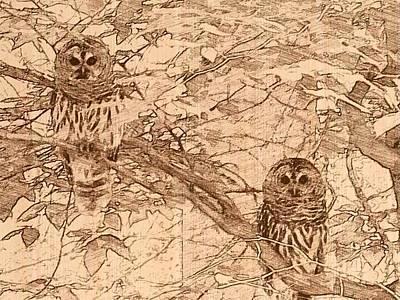 Barred Owl Digital Art - Owls by Jennifer Whitworth
