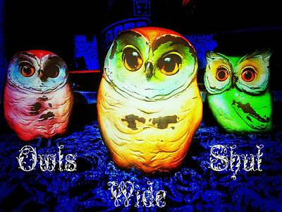 Photograph - Owls Wide Shut by Eddie G