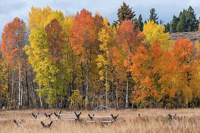 Photograph - Oxbow Fall Colors by Chuck Jason