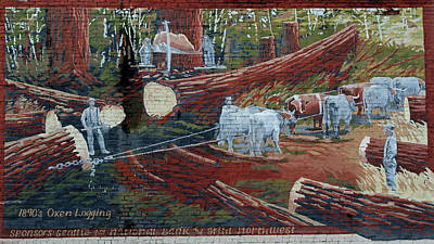 Photograph - Oxen Logging by Tikvah's Hope