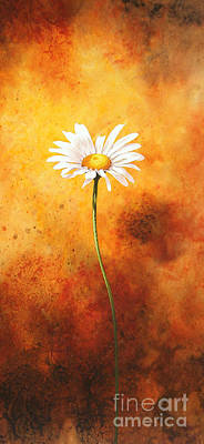 Single Flower Painting - Oxeye by John Francis
