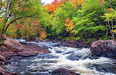 Photograph - Oxtongue Rapids 6 by Steve Harrington