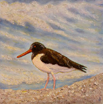 Painting - Oyster Catcher by Joe Bergholm
