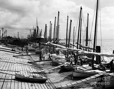 Oyster Luggers, New Orleans Ca 1910 Art Print