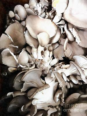 Photograph - Oyster Mushrooms - Fruit Of The Forest by Janine Riley