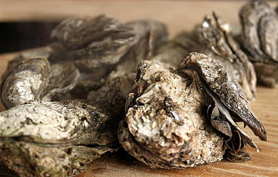 Oyster Roast Art Print by Greg Simmons
