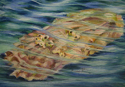 Painting - Oyster by Synnove Pettersen