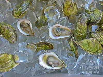 Oysters On Ice Art Print