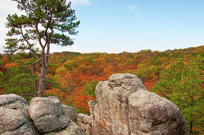 Photograph - Ozark Fall Color by Steve Stuller