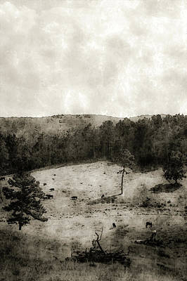 Photograph - Ozark Valley 4497 Bw_2 by Steven Ward