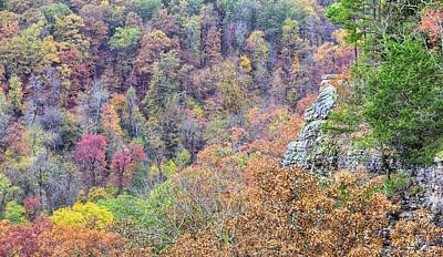 Photograph - Ozarks Autumn Views by JC Findley