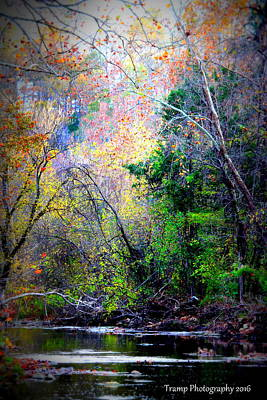 Ozarks Fall Art Print