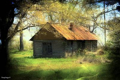 Photograph - Ozarks Homestead by Wesley Nesbitt