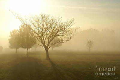 Ozarks Misty Golden Morning Sunrise Art Print