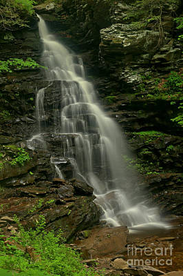 Photograph - Ozone Falls At Ricketts Glen by Adam Jewell