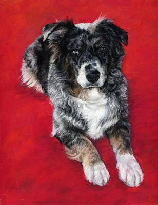 Cattle Dog Drawing - Ozzy On Red by Candy Maley