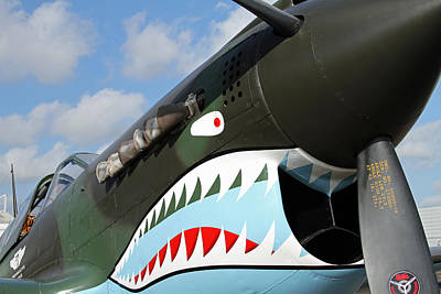 P-40 Flying Tigers Print by Mark Grayden