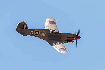 Photograph - P-40 In Uk Colors by John Daly