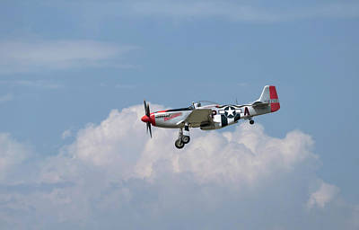 Photograph - P-51 Flyby by Joe  Palermo