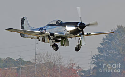 Photograph - P-51 Mustang Fighter 2 by Kevin McCarthy