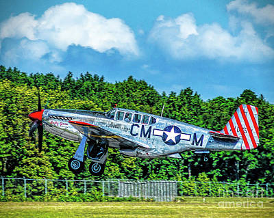 Photograph - P-51 Mustang Take Off by Nick Zelinsky