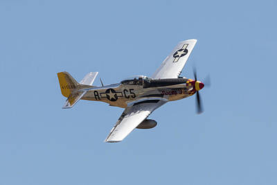 Photograph - P-51 Swamp Fox by John Daly