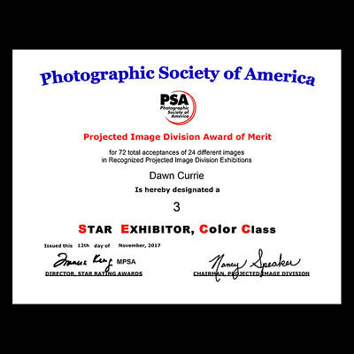Photograph - P S A - P I D C Three Star Exhibitor by Dawn Currie