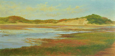 P Town Painting - P-town Moors by Phyllis Tarlow