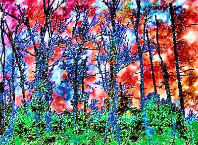 p1050894s Kancamagus on Fire Art Print by Ed Immar